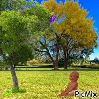 Outdoor baby