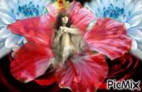 montage 10/15 reine des fleurs