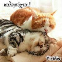 καληνύχτα.!