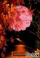 Autumn Night!