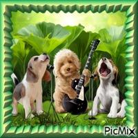 Les animaux en musique.