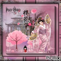 Carte spéciale japonaise en rose