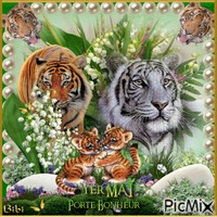 Bon 1er Mai les tigres