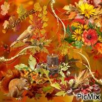Beauté de l'automne