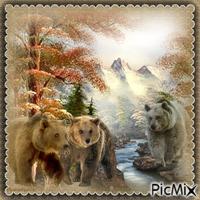 Paysage, montagnes, ours, rivière/lac