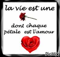 la vie est une rose dont chaque pétales est l'amour ♥