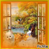 la beauté de l'automne