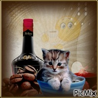 liqueur de café