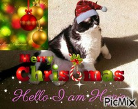 CHRISTMAS HOPIE