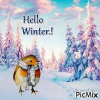 Hello Winter.!