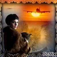 Avion...