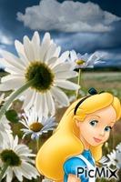 Alicia detrás de las maravillas