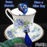 bonne journée,have a nice day