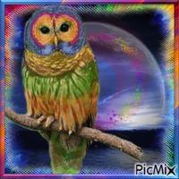 Owl's Good