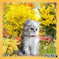 Weiße Katze in den Mimosen