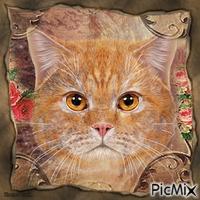 Portrait de chat.