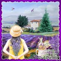 Lavendelfeld - Vintage