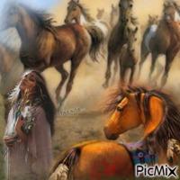 Les chevaux indiens
