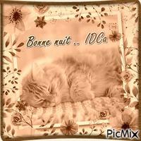 Bonne nuit les chaton