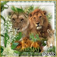 Bon 1er Mai les lions