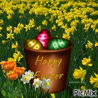 Happy Easter.!