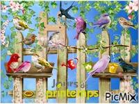 Le perchoir à oiseaux