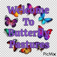 Butterfly Pastures
