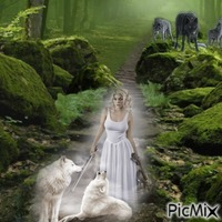 Lady And The Wolves