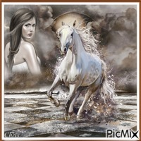 Le cheval de mes rêves