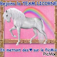 La Team Licorne