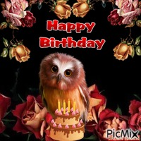 October owl birthday