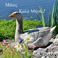 Καλό Πάσχα.!
