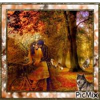 dans le bois en automne