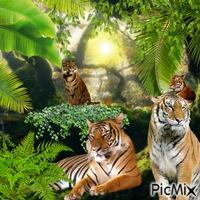 tigre et sa nature