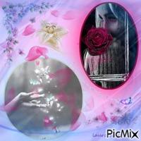 collage laurachan