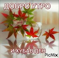 MARKOA