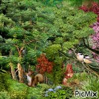 La belle forêt