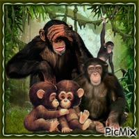 Vater Affe mit Familie