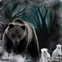 L'ours et ses petits !!!!