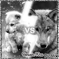 Bonsoir les loups