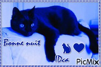 Bonne nuit  les chatons