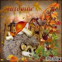 Couleur d'automne !