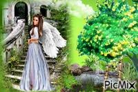 le jardin de l`ange