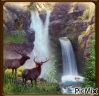 Cerf près de la cascade