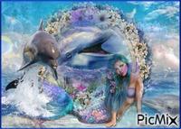 Sirah et les dauphins