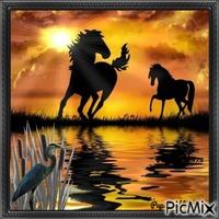 Douceur de silhouettes au coucher de soleil !
