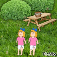 Twins go for picnic