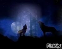 """""""Le loup en pleine lune"""""""