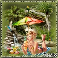 Paradies in den Tropen - Wettbewerb