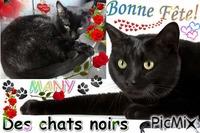 BONNE FETE DES CHATS NOIRS MANY